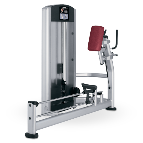 gluteus machine